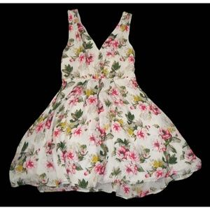 NWT Joie Hailah Silk Fit & Flare Floral Rose Dress